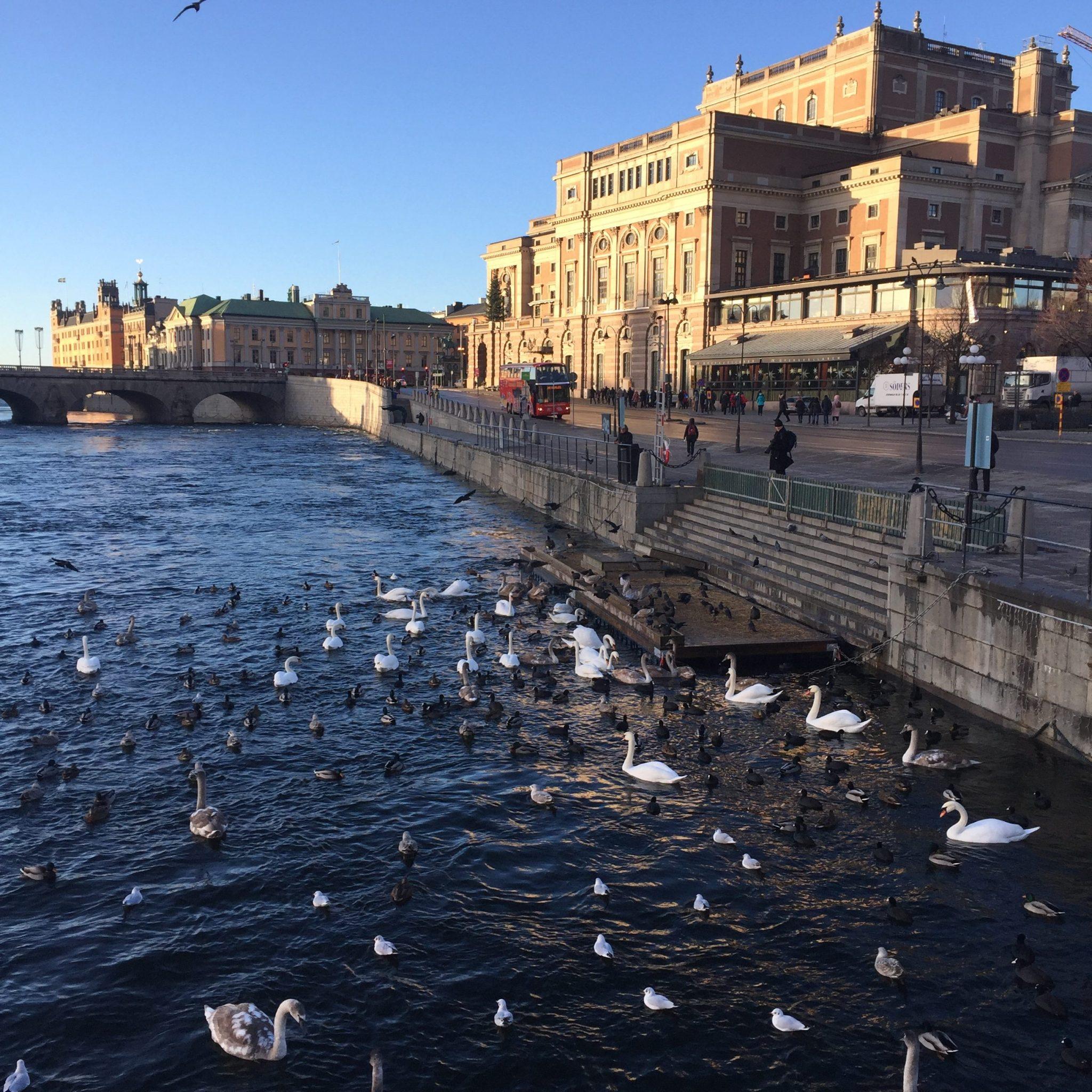 STOCKHOLM: Conseils pour bien préparer votre voyage