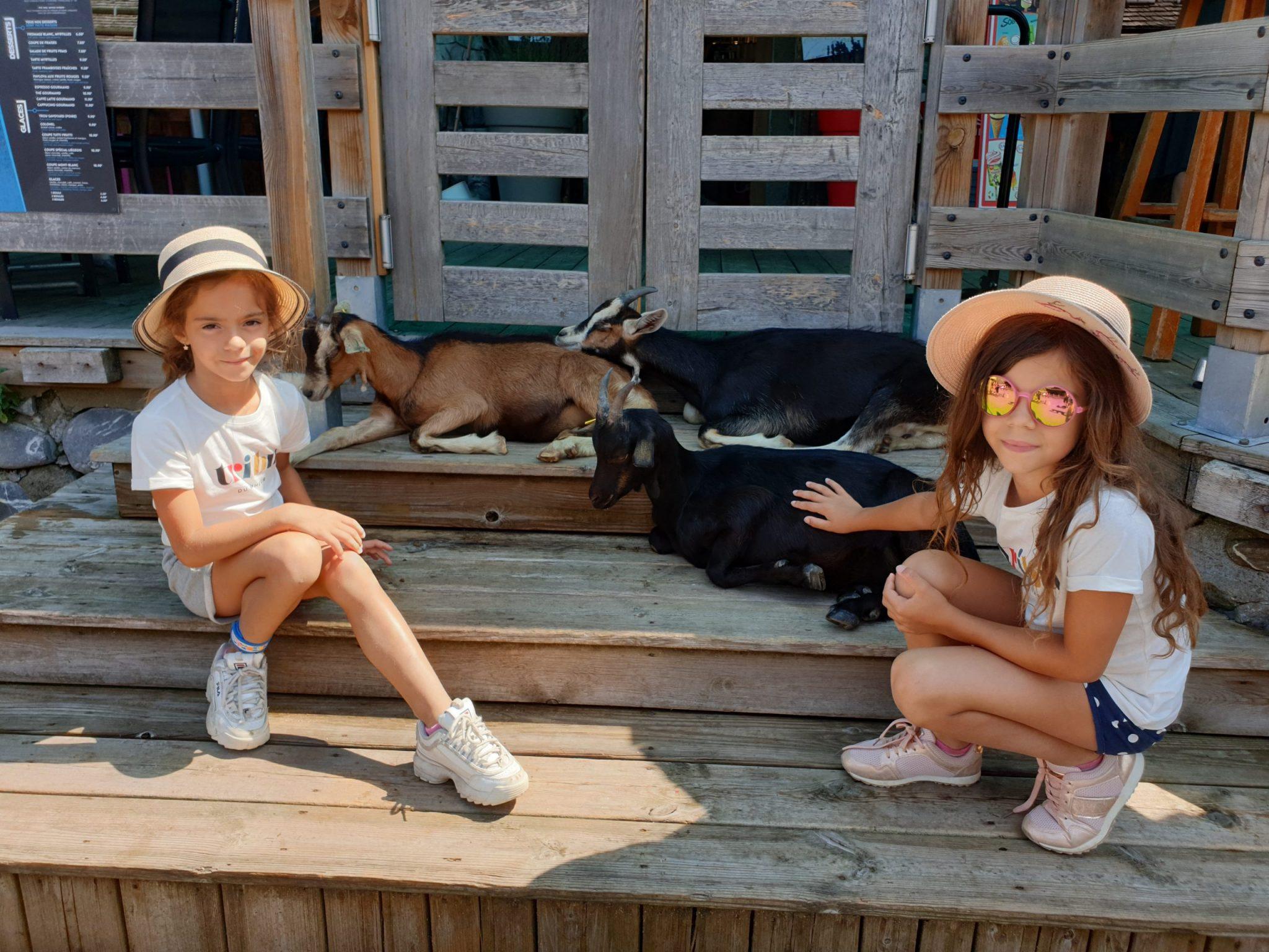 Visiter le village des chèvres Les Lindarets en Haute-Savoie