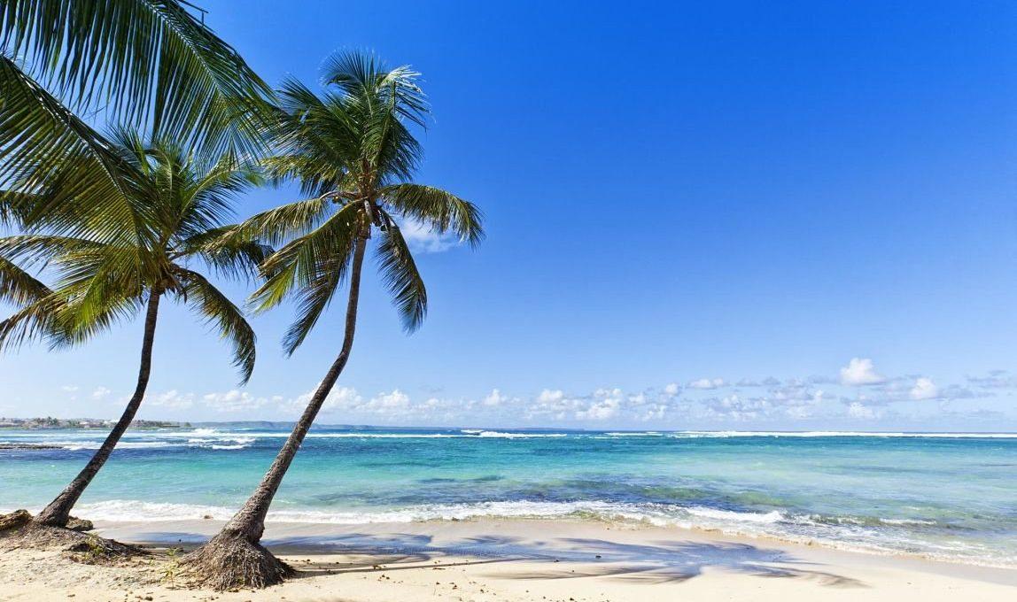 Voyage en famille en Guadeloupe